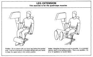 EM-leg-extension