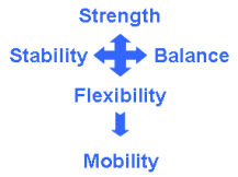 Strength-Balance-Yields-Mobility.01