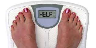Food lovers fat loss system reviews 2011 photo 4