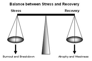 balance_between_stress_recovery_burnout
