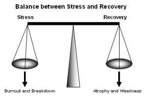 balance_between_stress_recovery_burnout