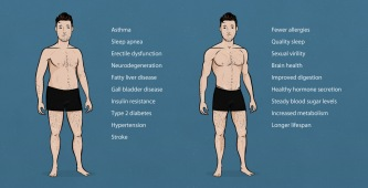 the-ideal-male-body-weight-chart-chubby-vs-muscle