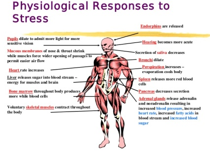 stress-causes-effects-and-management-by-dr-ali-garatli-5-638.jpg
